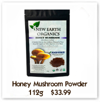 Honey Mushroom Powder New Earth Organics Alberta Canada